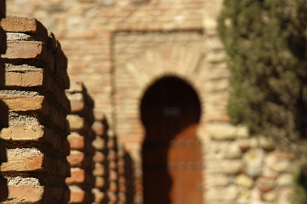 Alcazaba & Pedro Luis Gardens | Local Photo Tour