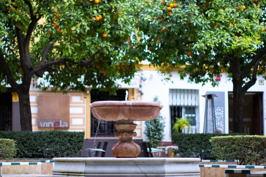Seville - Barrio Santa Cruz | Local Photo Tour